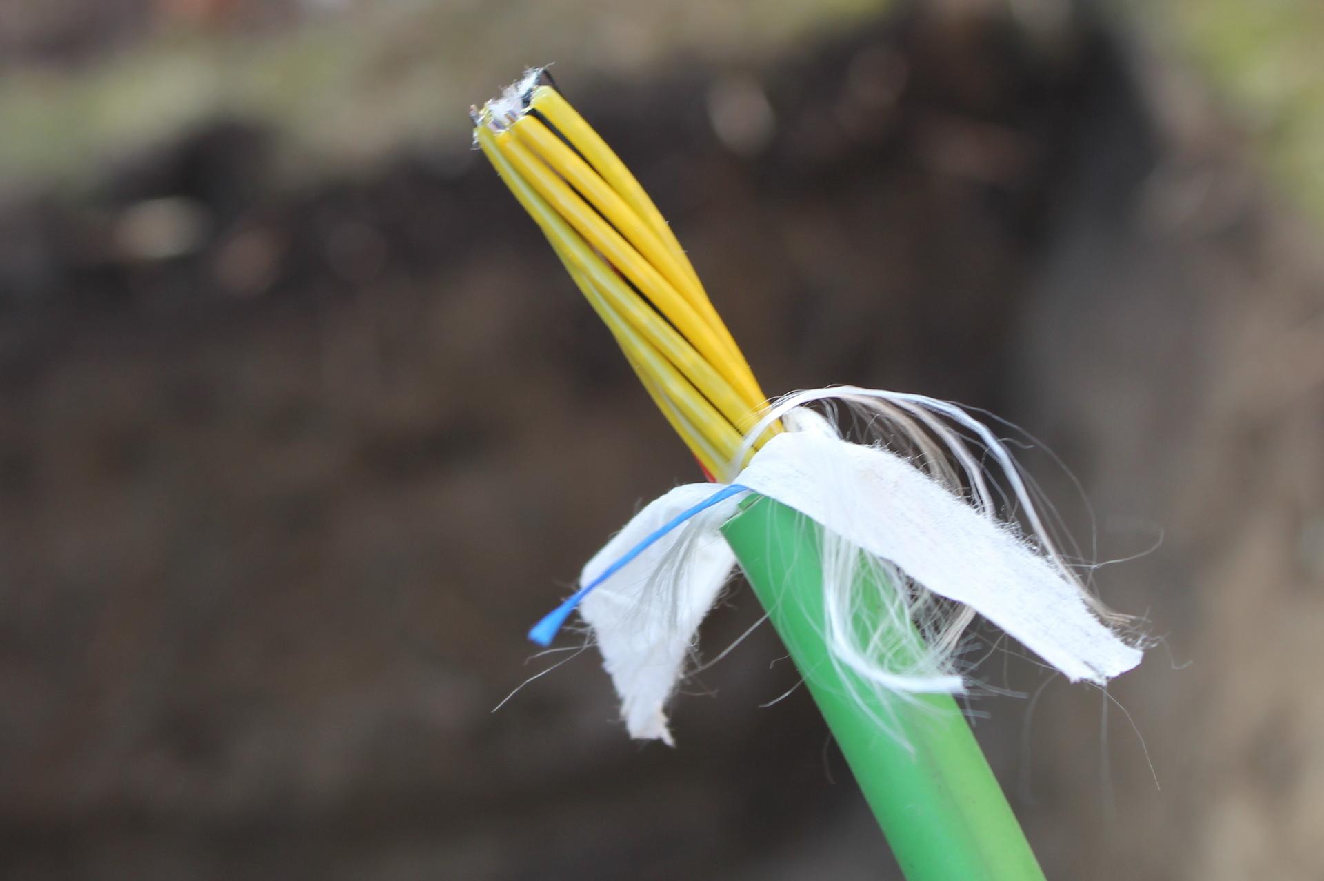 Så här ser fiberkabeln ut